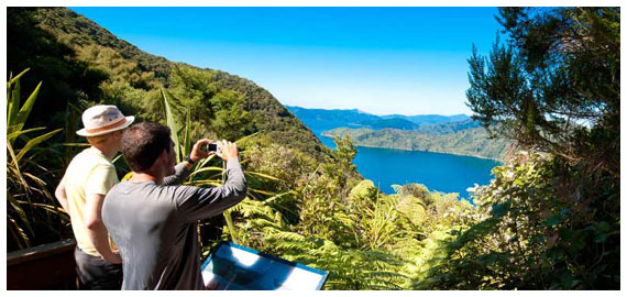 Explore the scenic, bush-fringed inland waterways  of the Marlborough Sounds