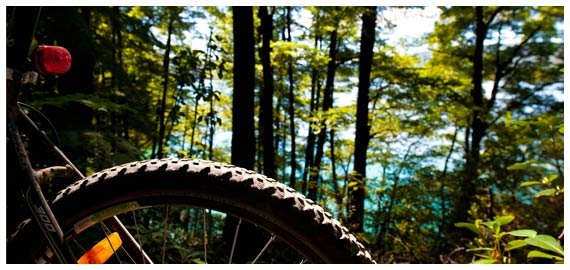 1, 2 or 3 day Mountain Bike packages available